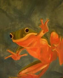 Frog Looking In