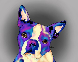 Boston Terrier - Inner Galaxy