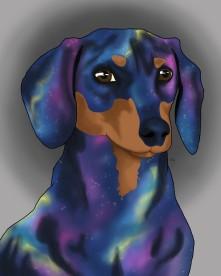 Dachshund - Inner Galaxy