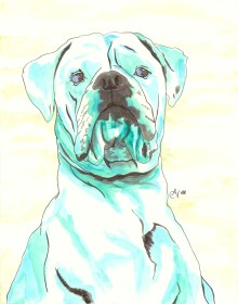 American Bulldog Watercolor and Ink