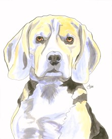Beagle Watercolor and Ink
