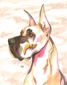 Great Dane Watercolor and Ink