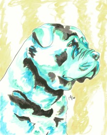 Rottweiler Watercolor and Ink